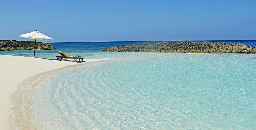 Dans cette enclave paradisiaque des Caraïbes