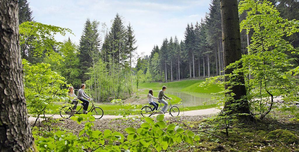 Mettez-vous au vert en Moselle-Lorraine - Domaines des Trois Forêts - Offre Découverte Hattigny