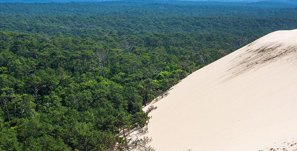 N'oubliez pas de gravir la magnifique dune du Pyla !