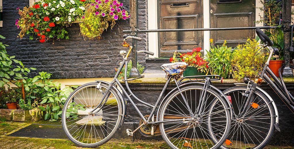 Et Amsterdam vous tend les bras