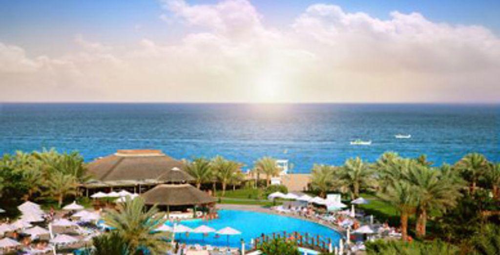 - Fujairah Rotana Resort & Spa ***** - Fujairah - Emirats arabes unis Fujairah
