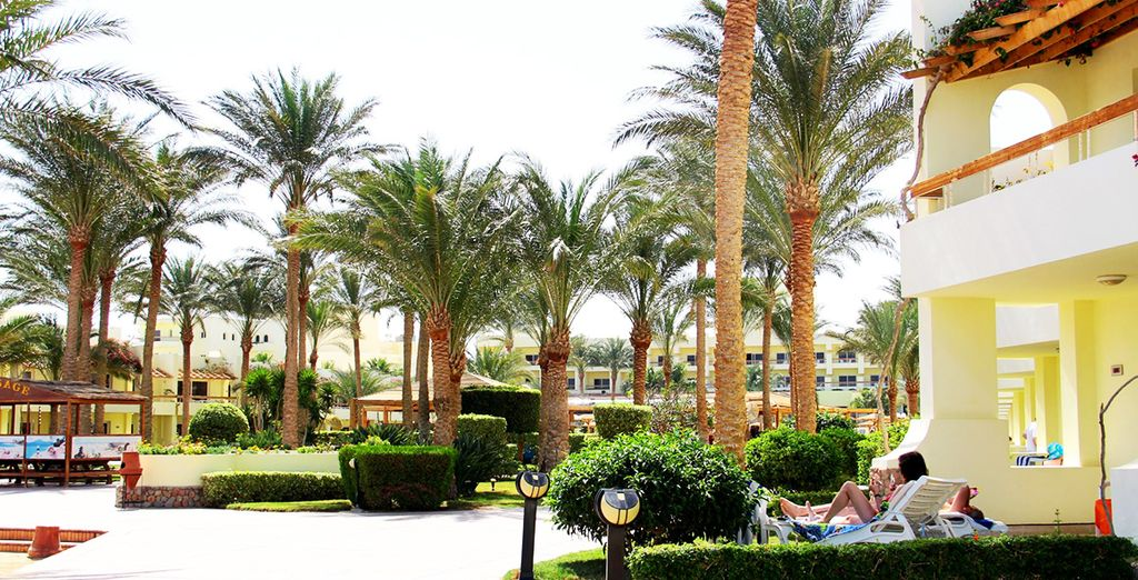 Au Palm Beach à Hurghada !