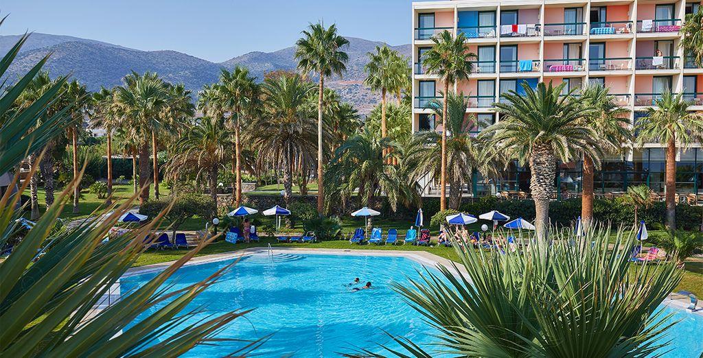 Palmiers et piscine seront ravis de vous accueillir dans ce bel établissement