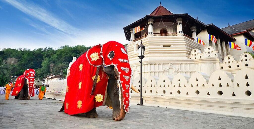 e partirete per la meravigliosa Kandy