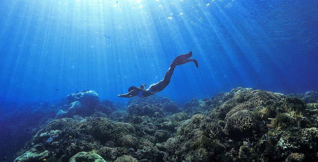 avrete a vostra disposizione l'utilizzo illimitato di attrezzatura per lo snorkeling