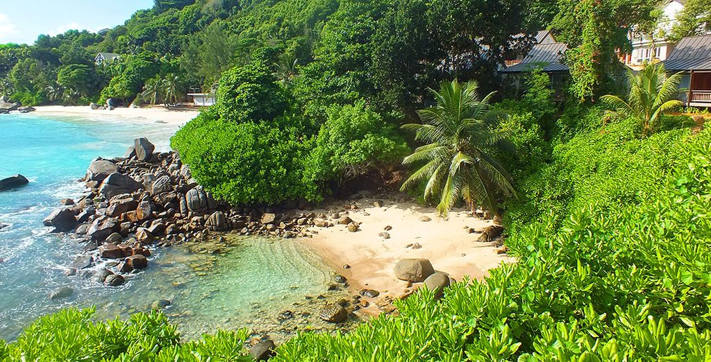 Spiagge sabbiose alle Seychelles