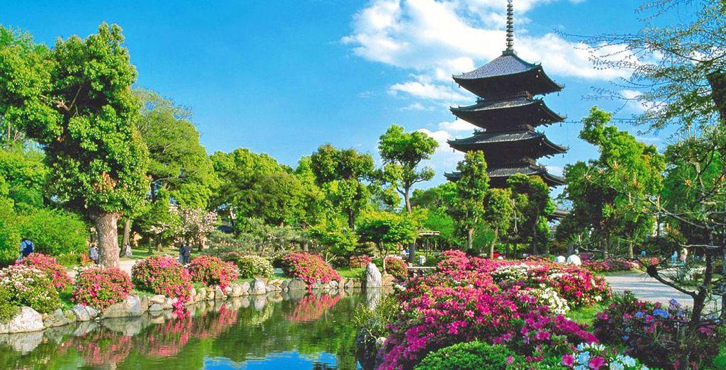 Partite per il vostro incredibile viaggio in Giappone