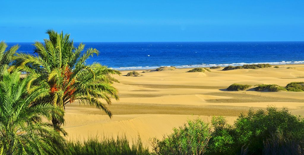 Benvenuti sulla bellissima isola di Gran Canaria
