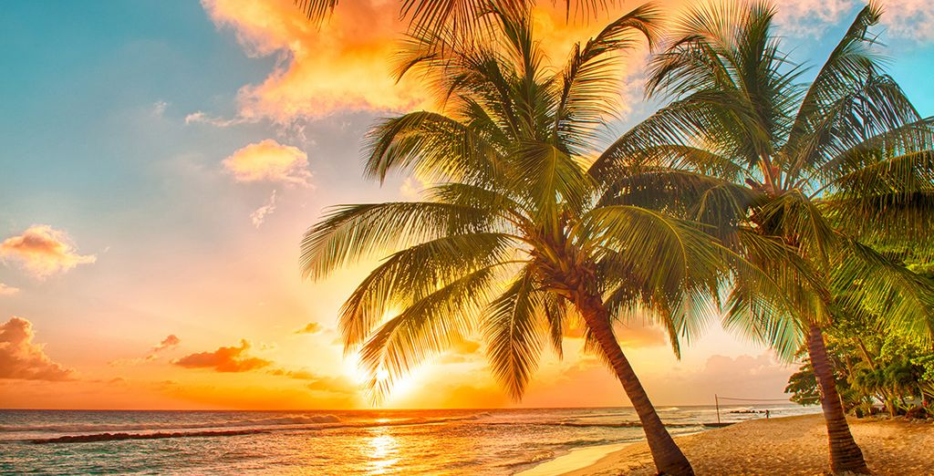 E spiagge paradisiache!
