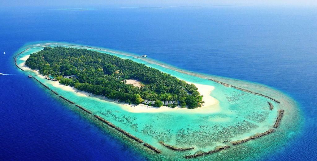 Benvenuti alle Maldive e precisamente sull'Atollo di Baa