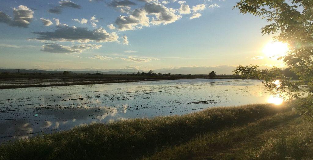 lungo il fiume Po e le sue risaie, magari in bicicletta