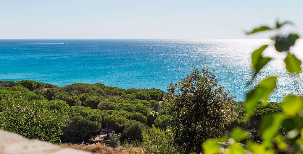 La meravigliosa Sardegna vi attende