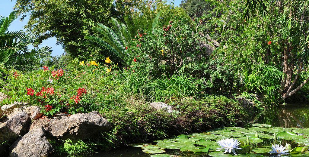Tra storia e giardini botanici