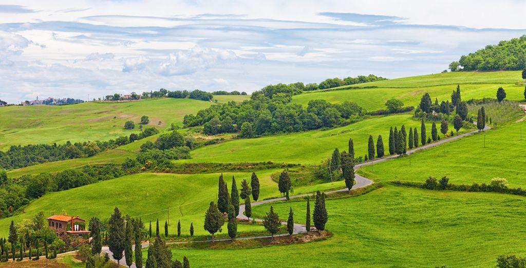 nel bellissimo contesto delle colline del Chianti