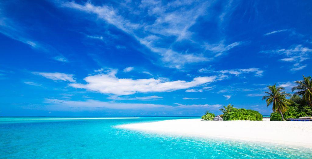 Non potrete dimenticare una vacanza in questo paradiso