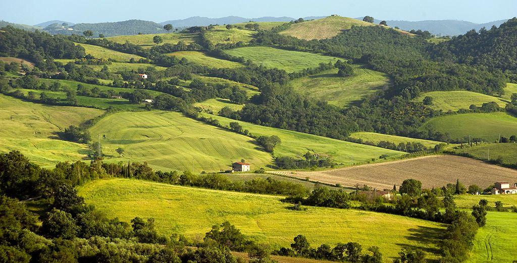 Un moderno 4* situato su una collina verdeggiante