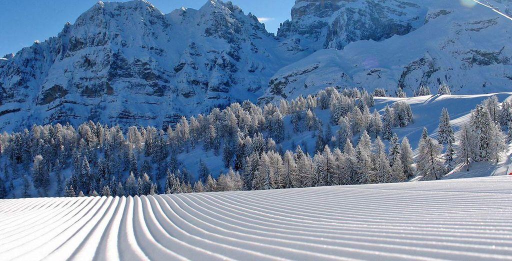 A pochissimi km dalle bellissime piste da sci della Ski Area Campiglio Dolomiti di Brenta