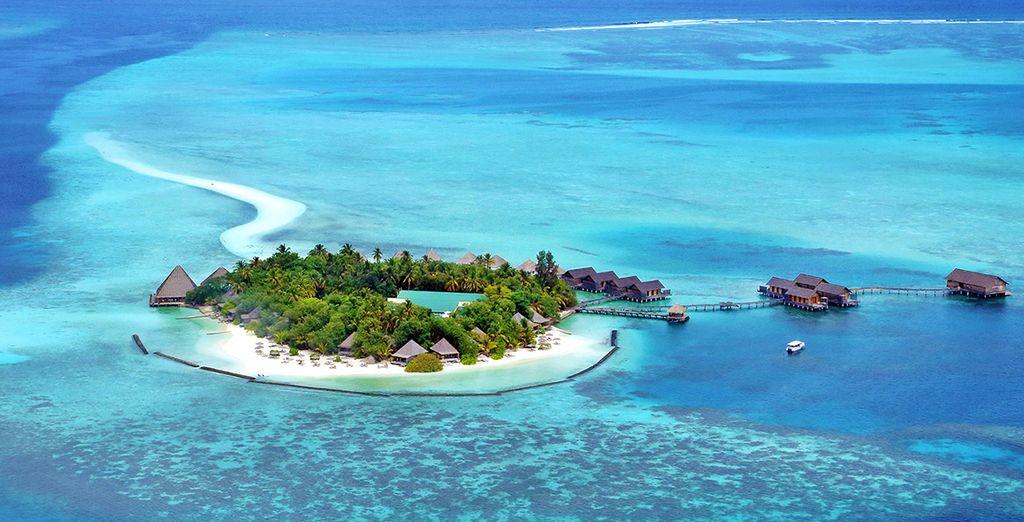 Benvenuti in un piccolo angolo di paradiso nell'Oceano Indiano