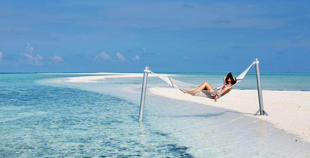 Cosa aspettate? Partite per le Maldive