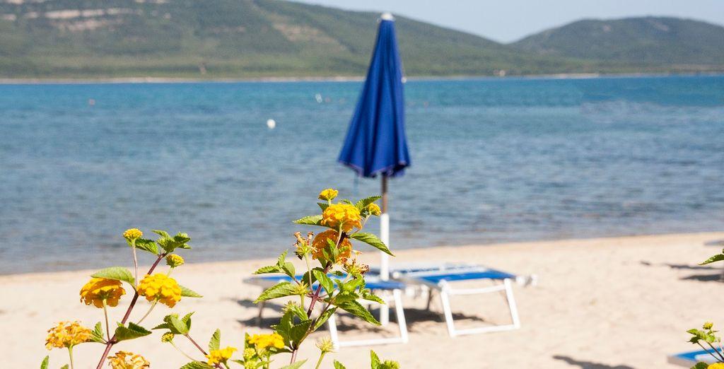 Godetevi un soggiorno nella splendida località di Alghero.