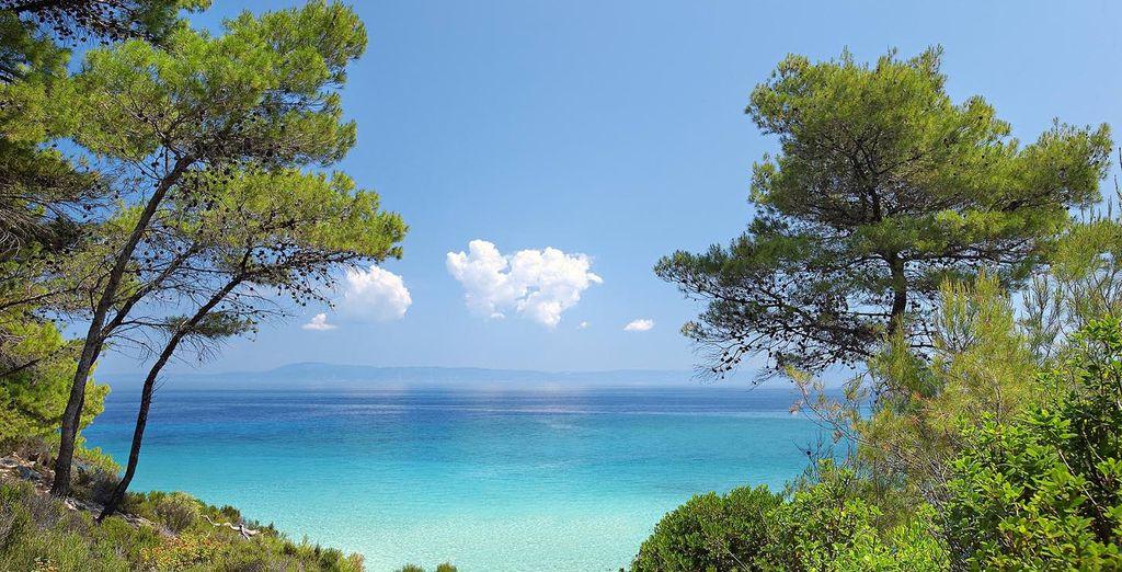 vi innamorerete di questa zona ricca di natura rigogliosa e mare da sogno