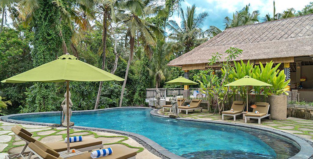 Vi attende un resort che propone diversi servizi e strutture per il vostro benessere e il vostro relax