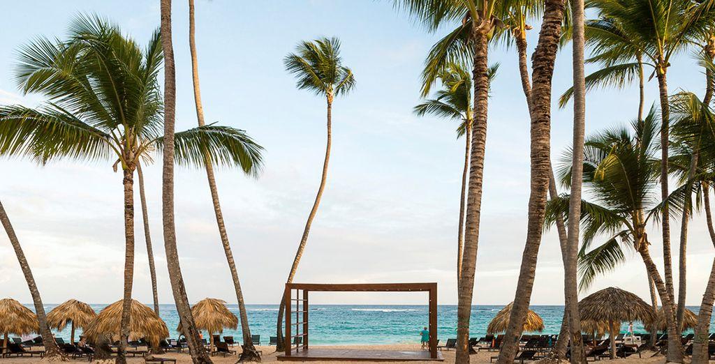 oppure fate un passeggiata rigenerante lungo la spiaggia di sabbia dorata