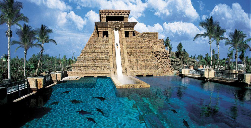 """In un hotel con un parco acquatico di 17 ettari, chiamato """"Aquaventure""""!"""