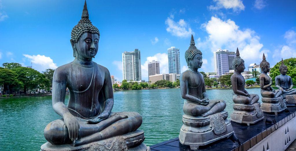 Partite per l'incantevole Sri Lanka