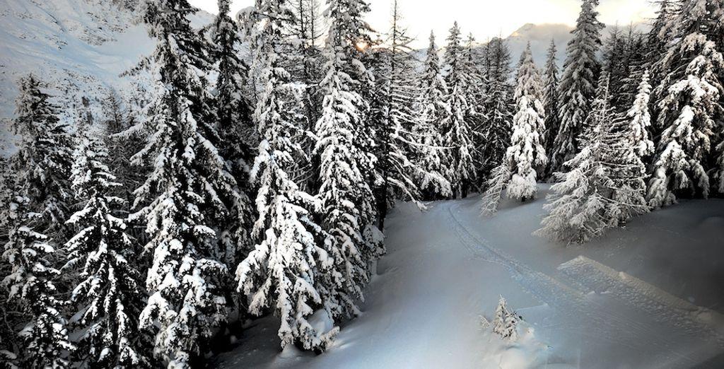 Potrete scegliere se sciare sui 160 km di piste di La Thuile