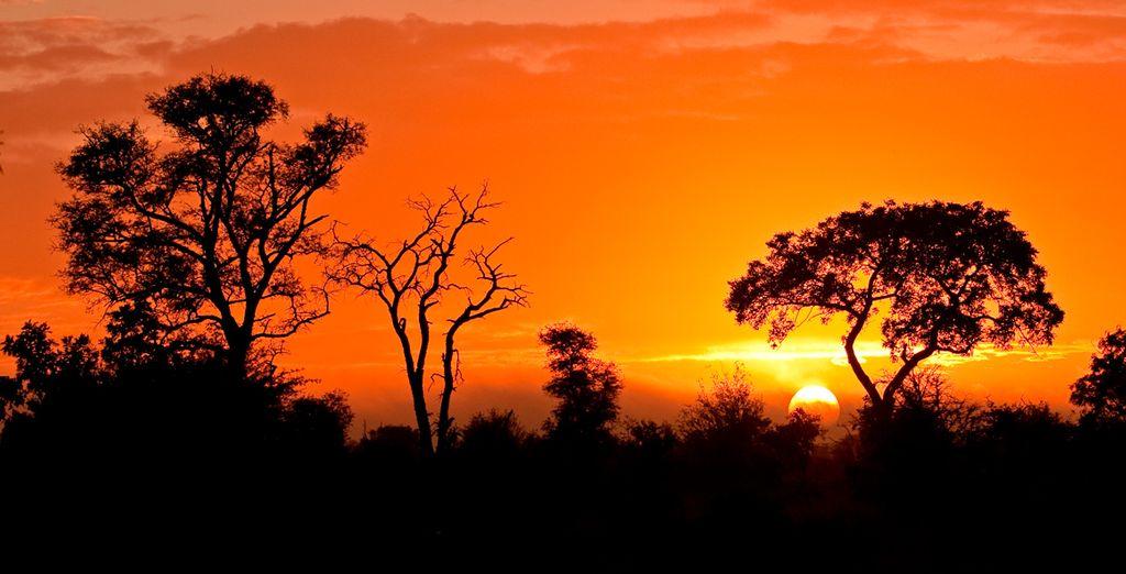 Il 3° giorno di viaggio vi dirigerete verso il Kruger National Park