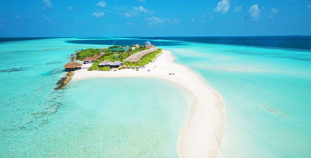 Partite per le splendide Maldive!
