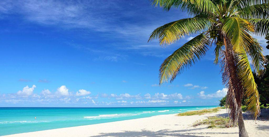 Tour L\'Avana, Trinidad e mare in 5* All Inclusive Voyage Privé ...