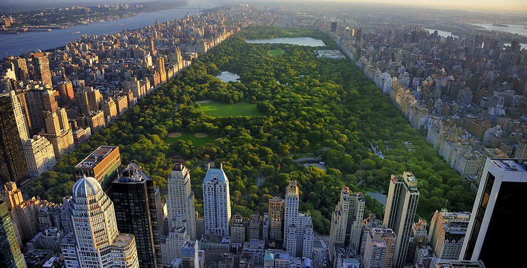Un accogliente hotel a pochi passi da Carnegie Hall, Central Park e Fifth Avenue vi accoglierà