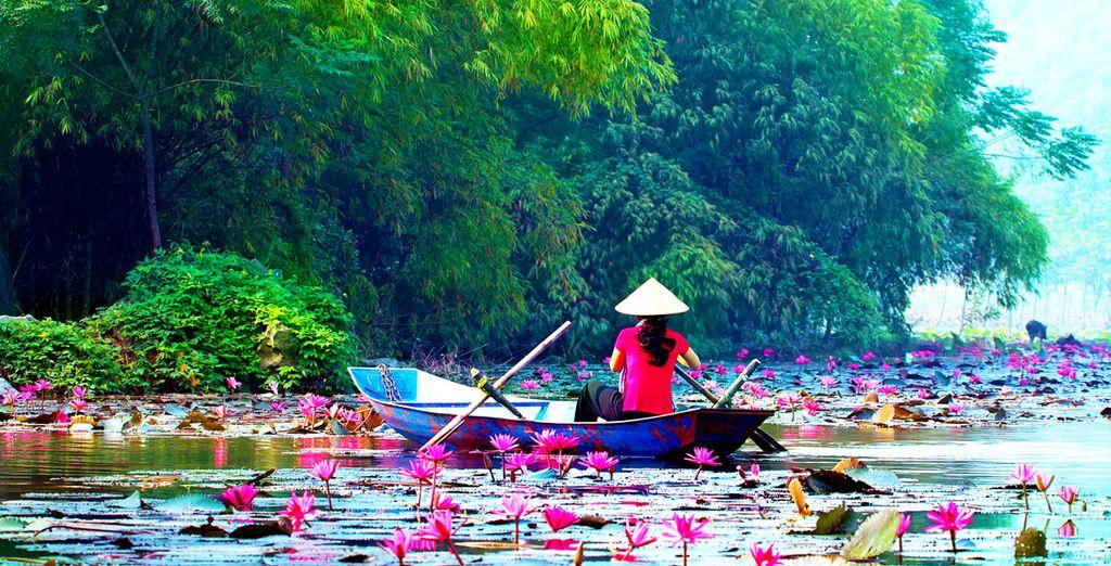 Wilt u het adembenemende Vietnam ontdekken?