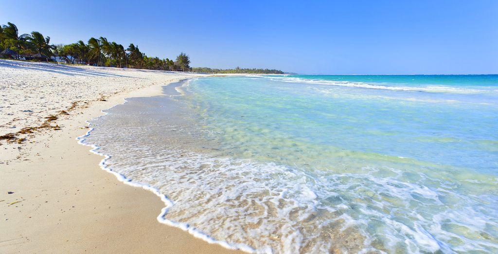 Aan het strand van Diani, één van de mooiste stranden ter wereld