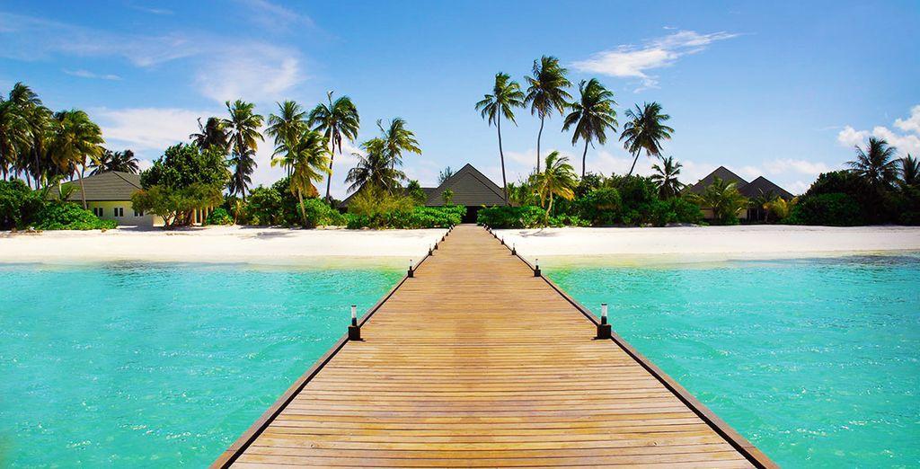 Op naar de Maladiven!