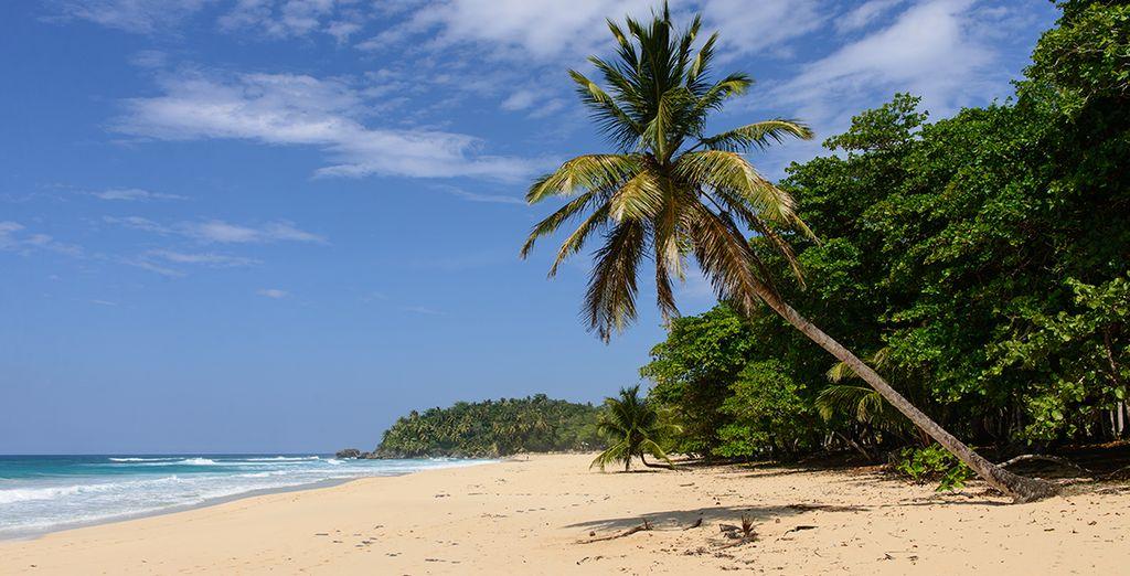 In het noorden van Punta Cana, aan het prachtige Uvero Alto strand
