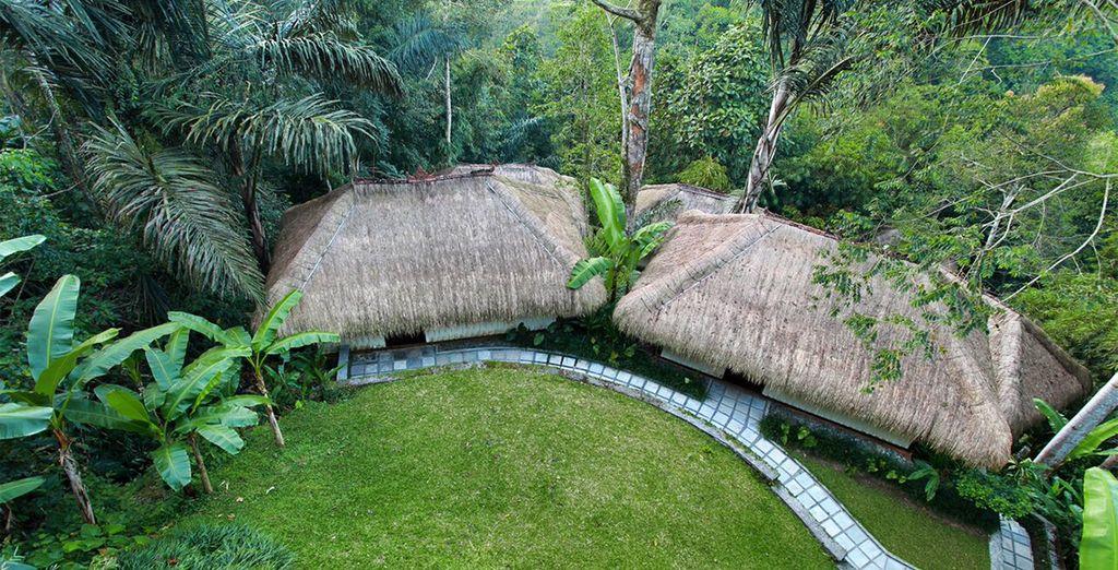 Elk van de 18 villa's is gelegen midden in het groen