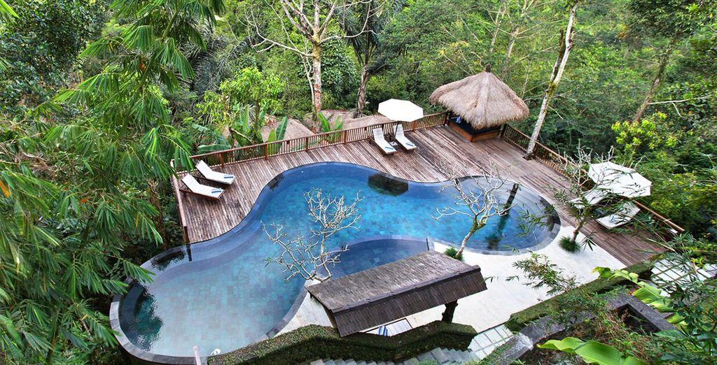 Neem 's ochtends een duik in het zwembad, gevuld met vers bergwater