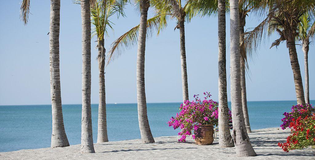 Vervolgens gaat het richting het idyllische strand Playa Blanca