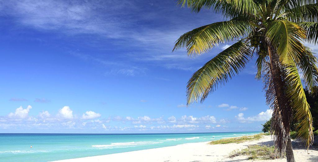 Vervolgens reist u naar de stranden van Varadero