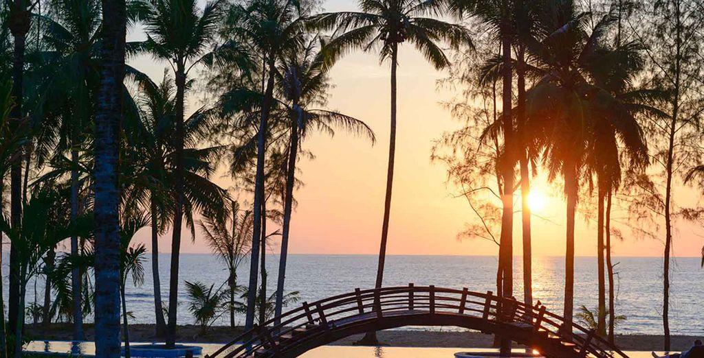 Welkom in het Haven Khao Lak!