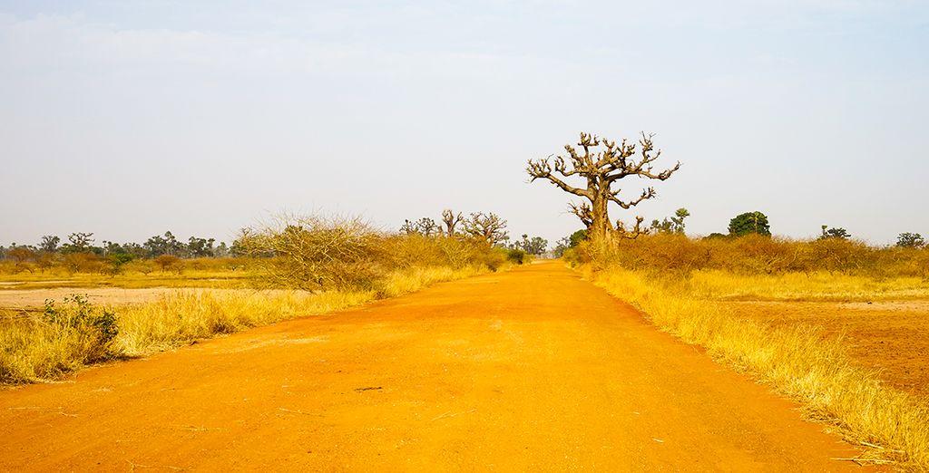 Op reis naar prachtige landschappen