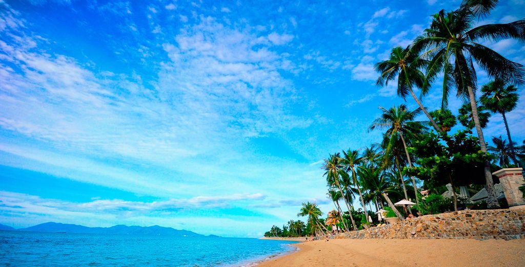 Op de prachtige stranden van Koh Samui