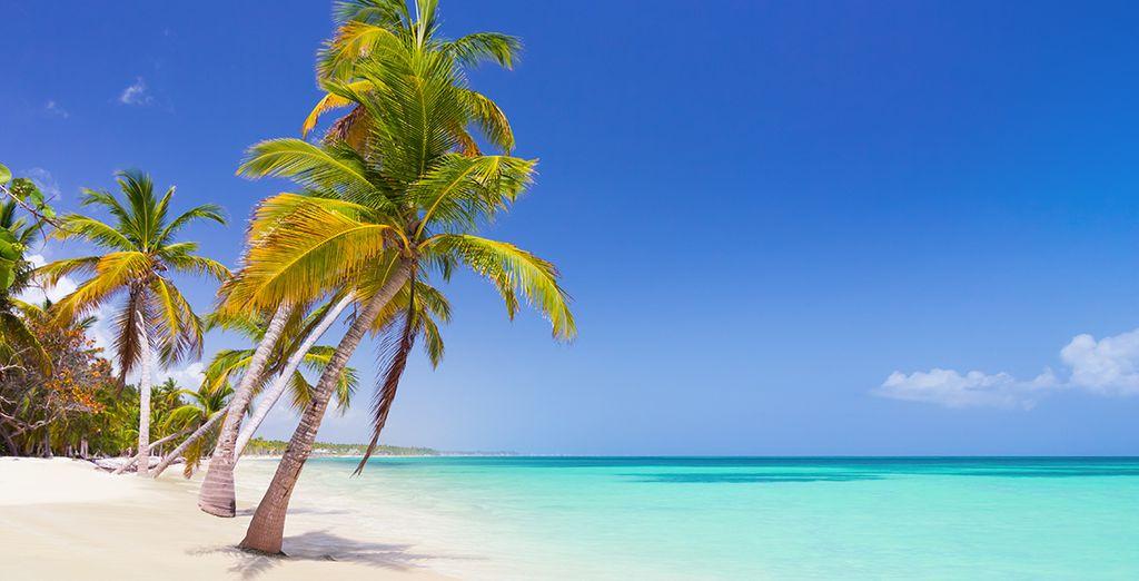 Kom met ons mee naar de Dominicaanse Republiek