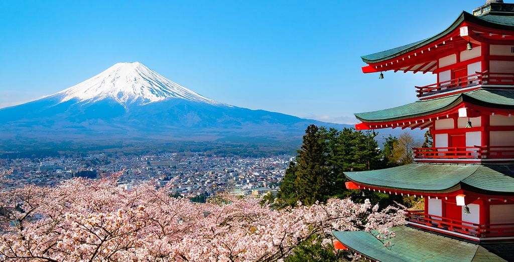 Droomt u ervan om Japan te ontdekken?