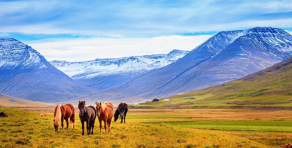 Prachtige landschappen
