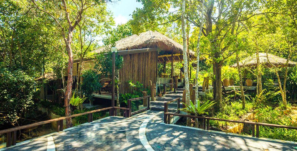 U vervolgt uw reis naar een natuurlijke omgeving in het du Koh Yao Yai Village 4*