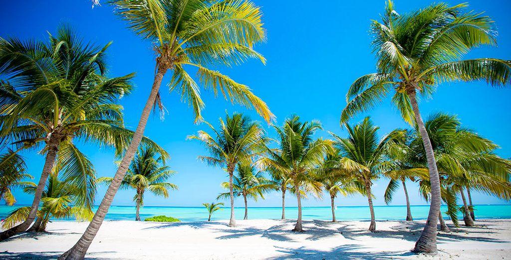 Op de idyllische stranden